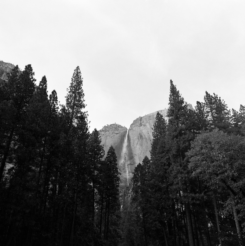 Yosemite_Kodak 400TX_120_3.jpg