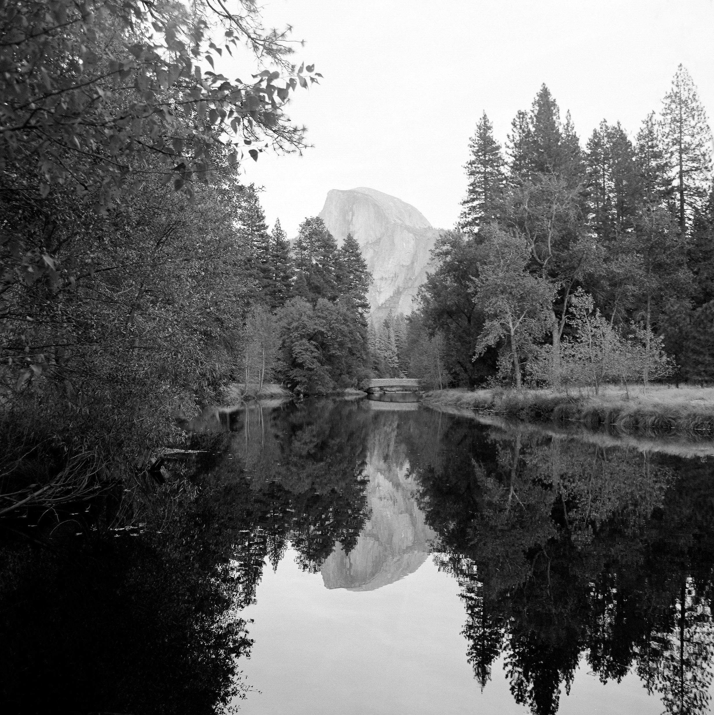 Yosemite_Kodak 400TX_120_8 copy.jpg