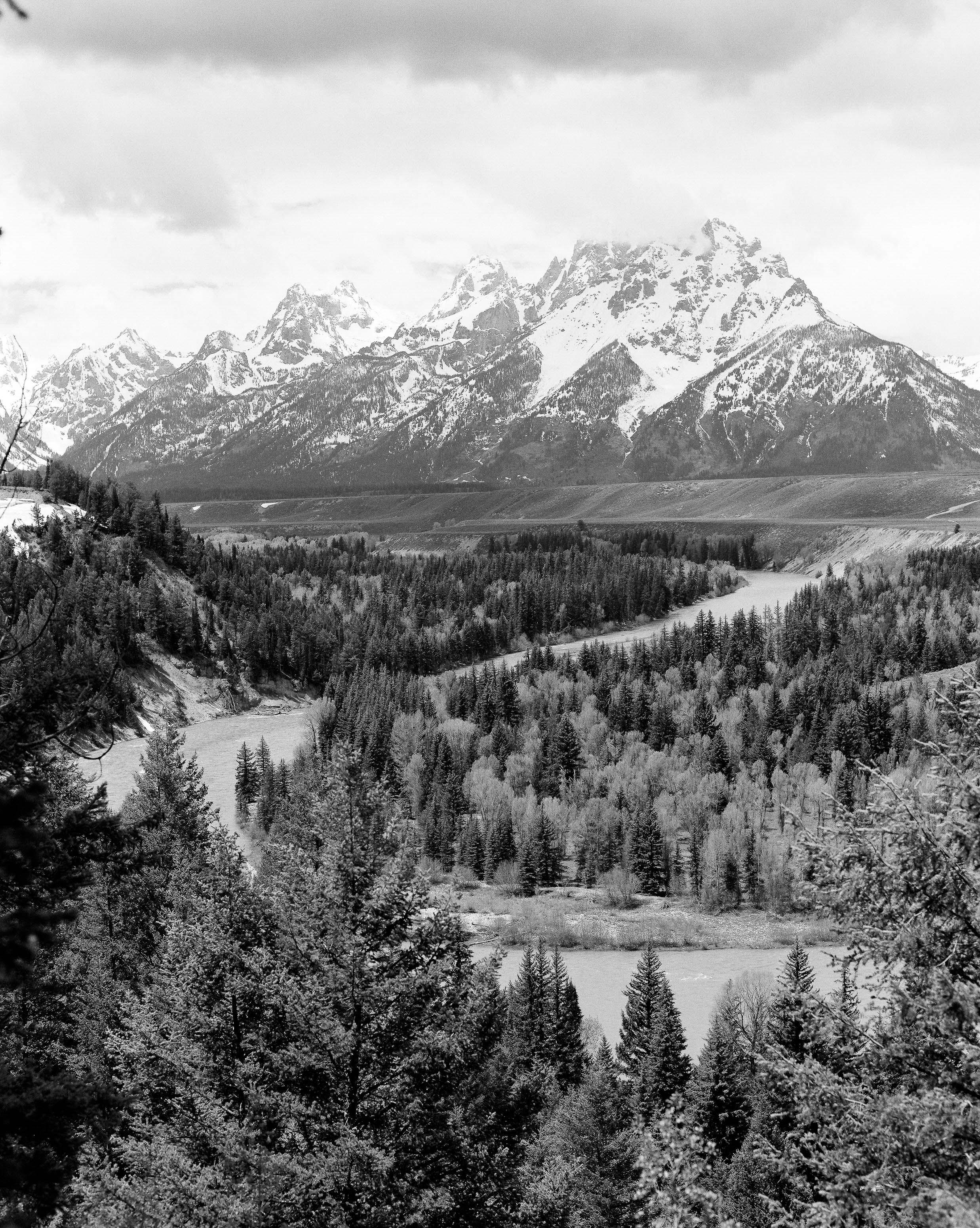 Yellowstone_Kodak TX400_120_9.jpg