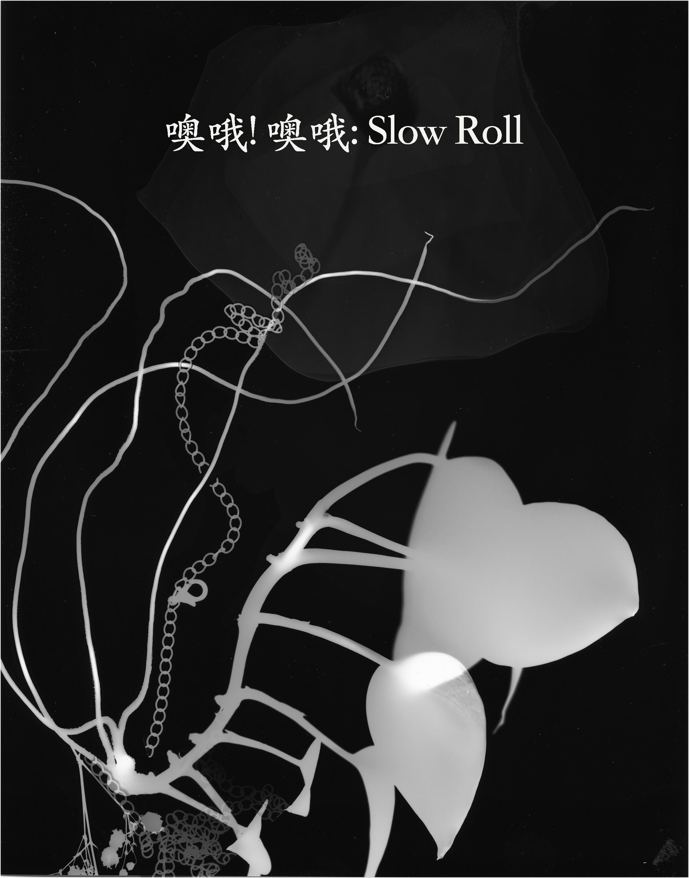 SlowRollBackground-1.jpg