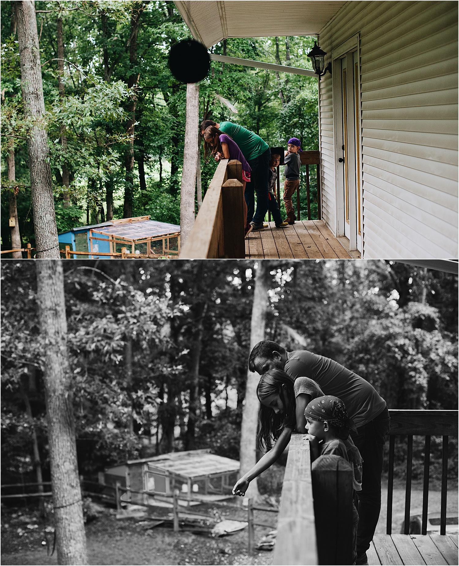 A family's Asheville Homestead