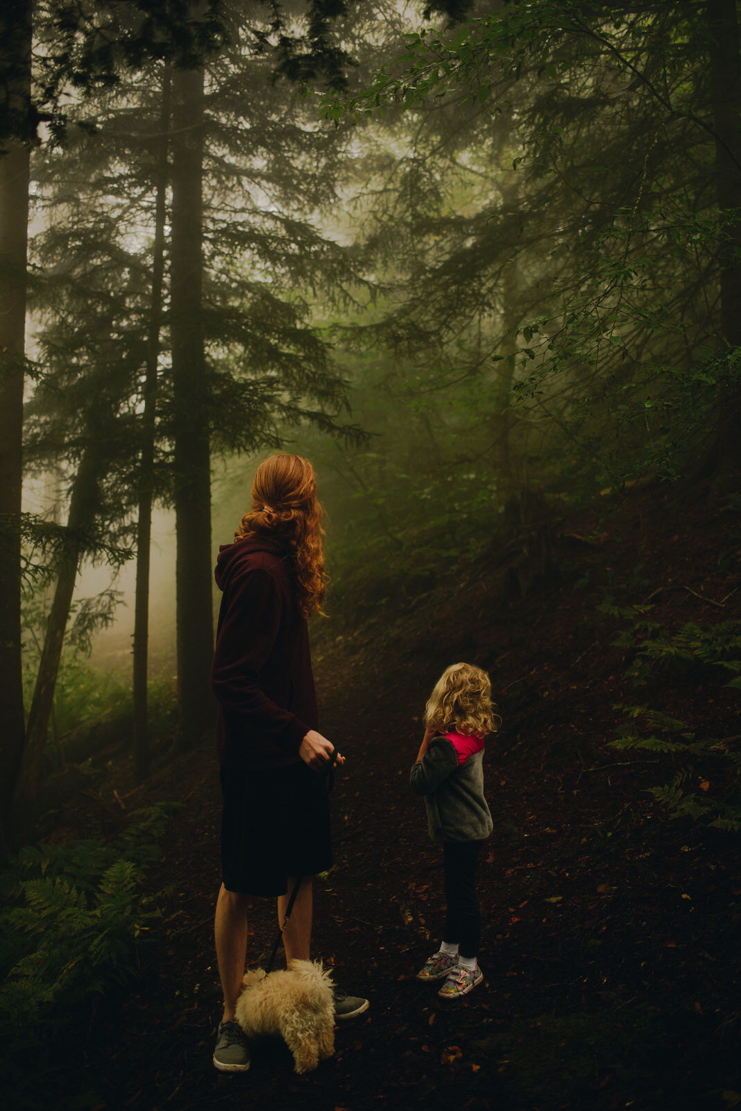 Fog-Blue-Ridge-Parkway-family-hiking