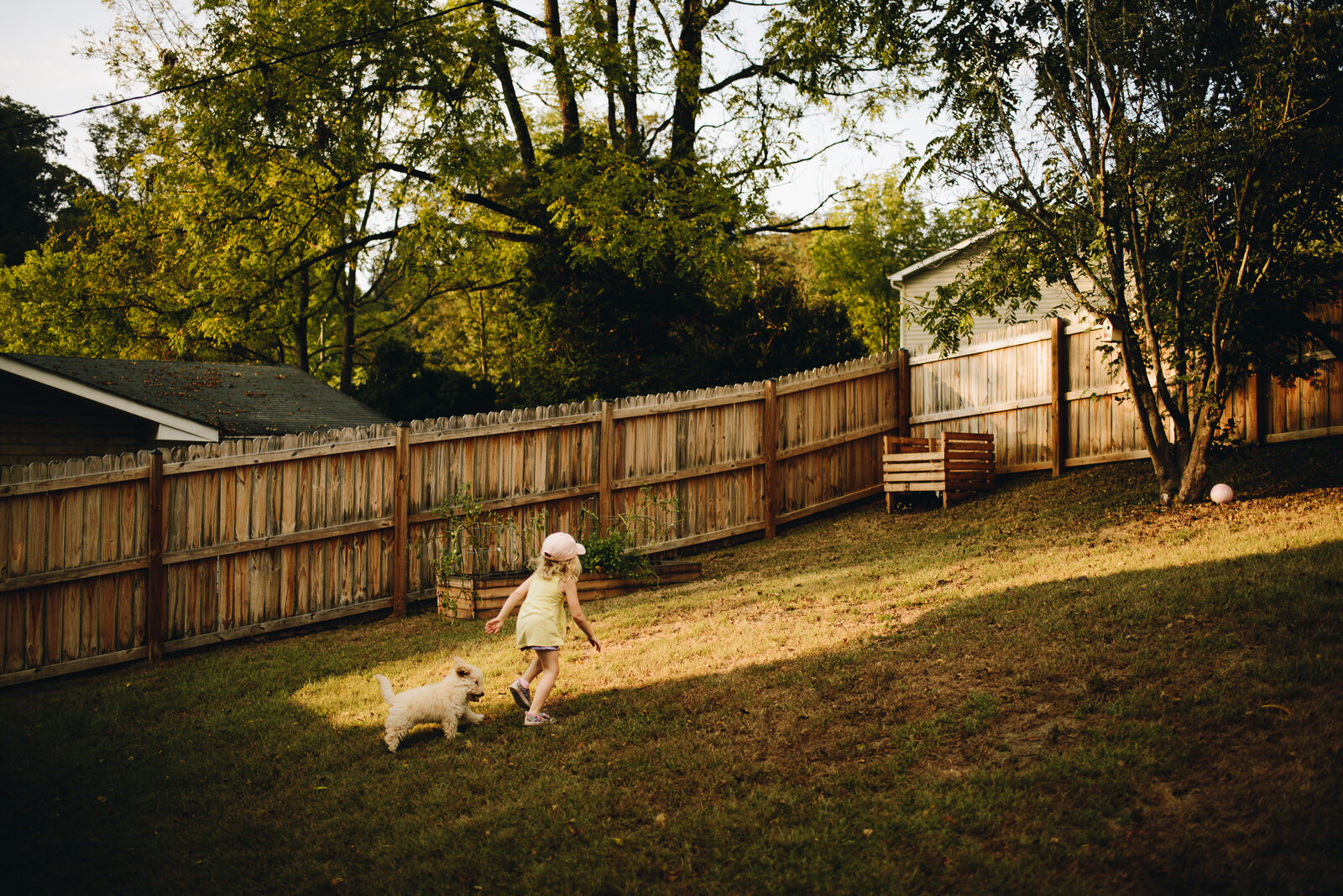 Our daughter and puppy run in the golden hour light.