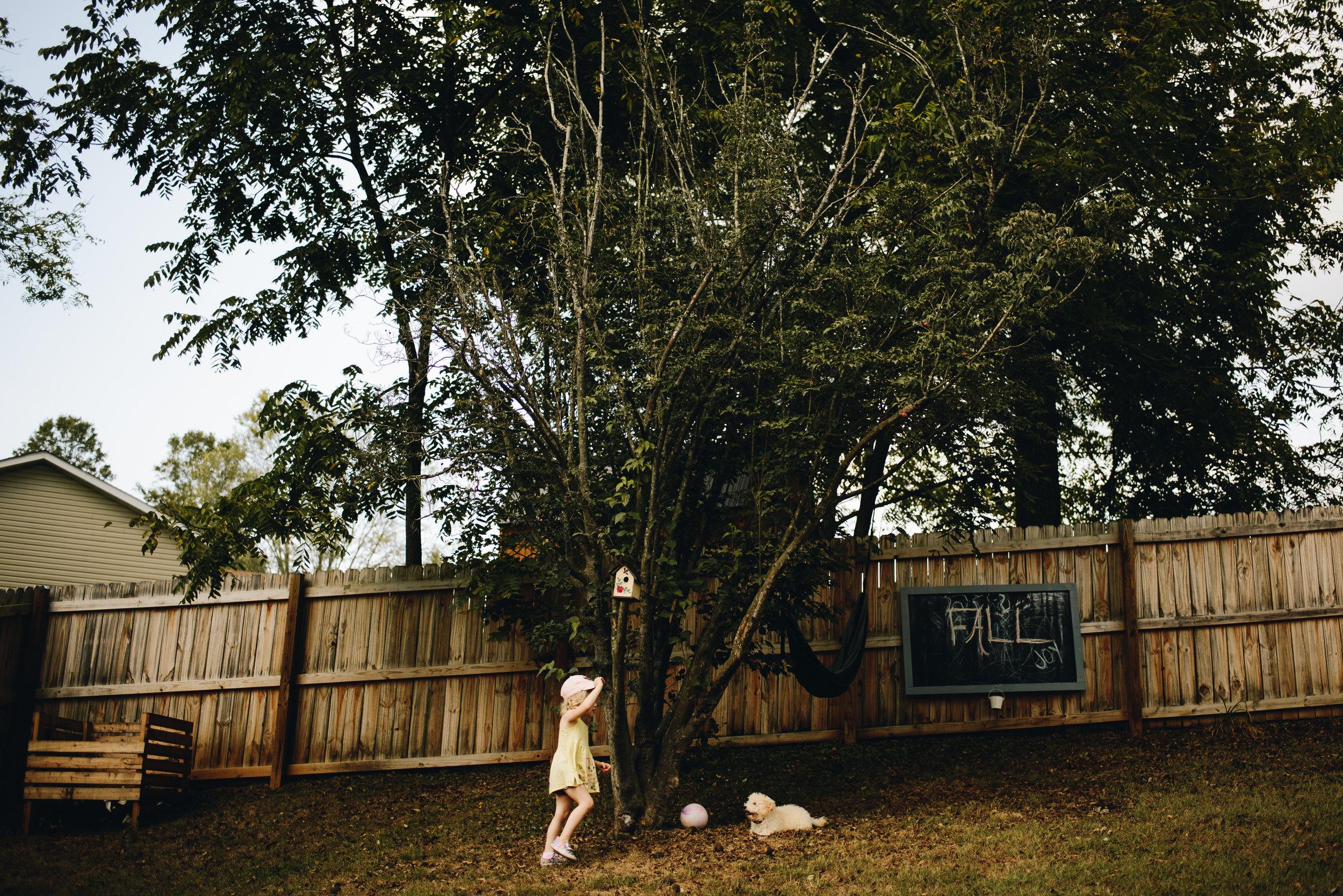 Children_Play_Backyard