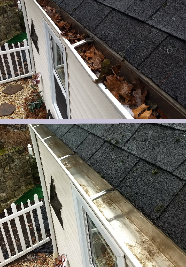 Roof Cleaning In Redmond
