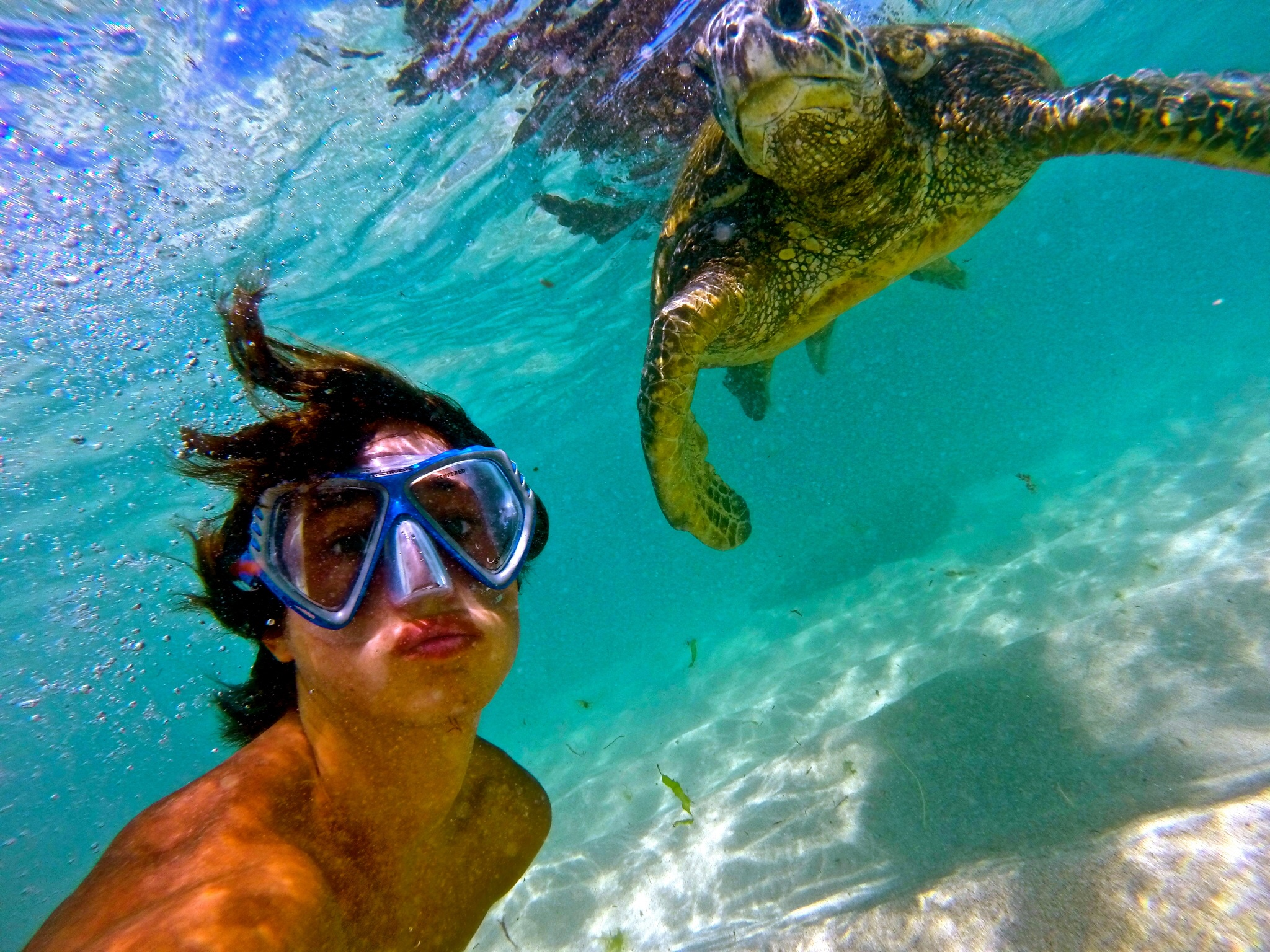 snorkel tour bob marlin charters