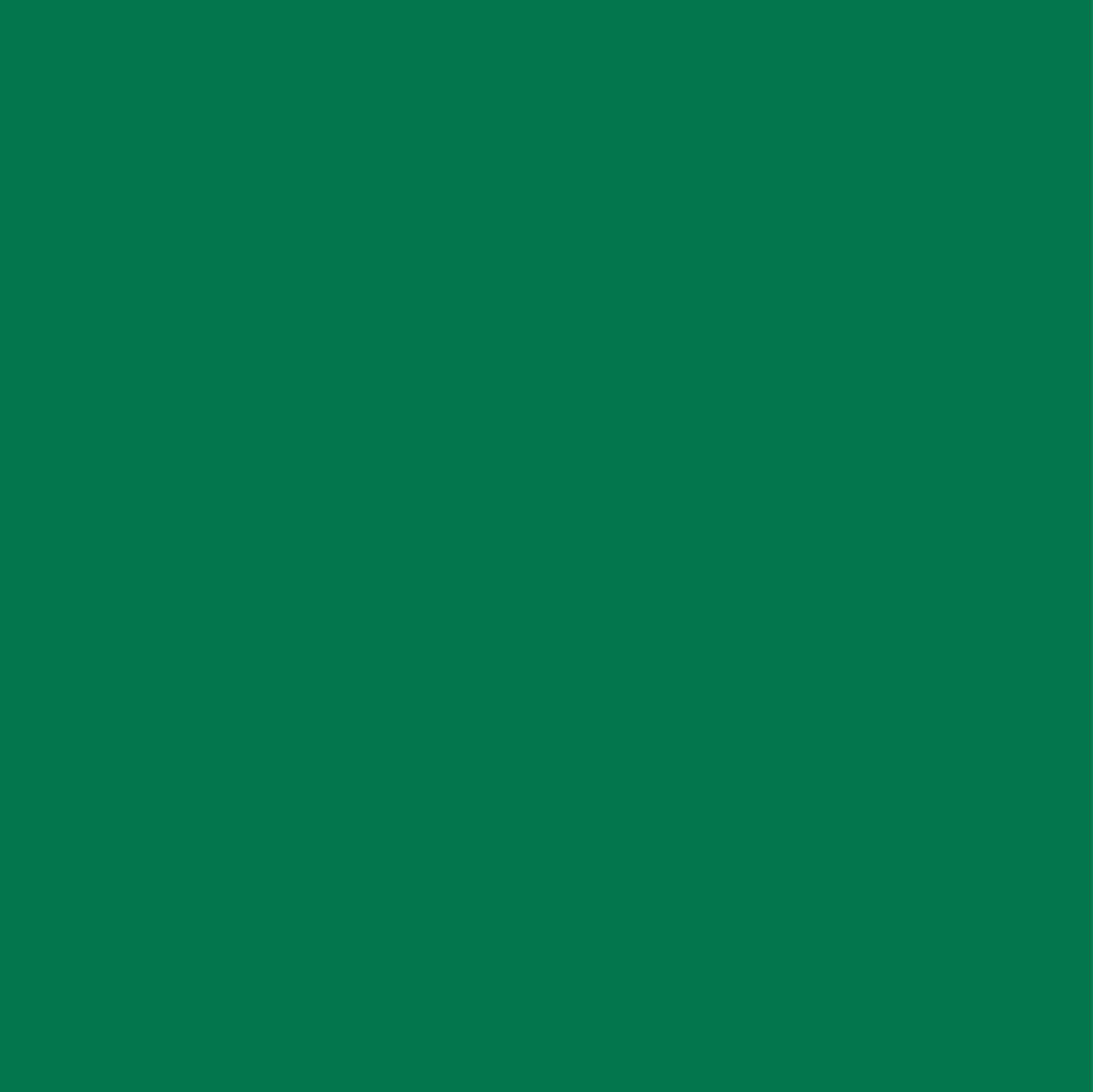 Balance Chestnut Hill_Brand Colors_Green.png