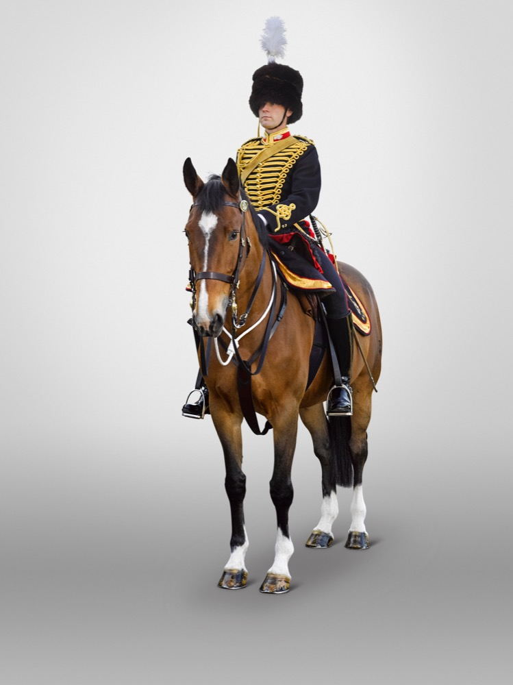Captain The King's Troop, Royal Horse Artillery .jpeg