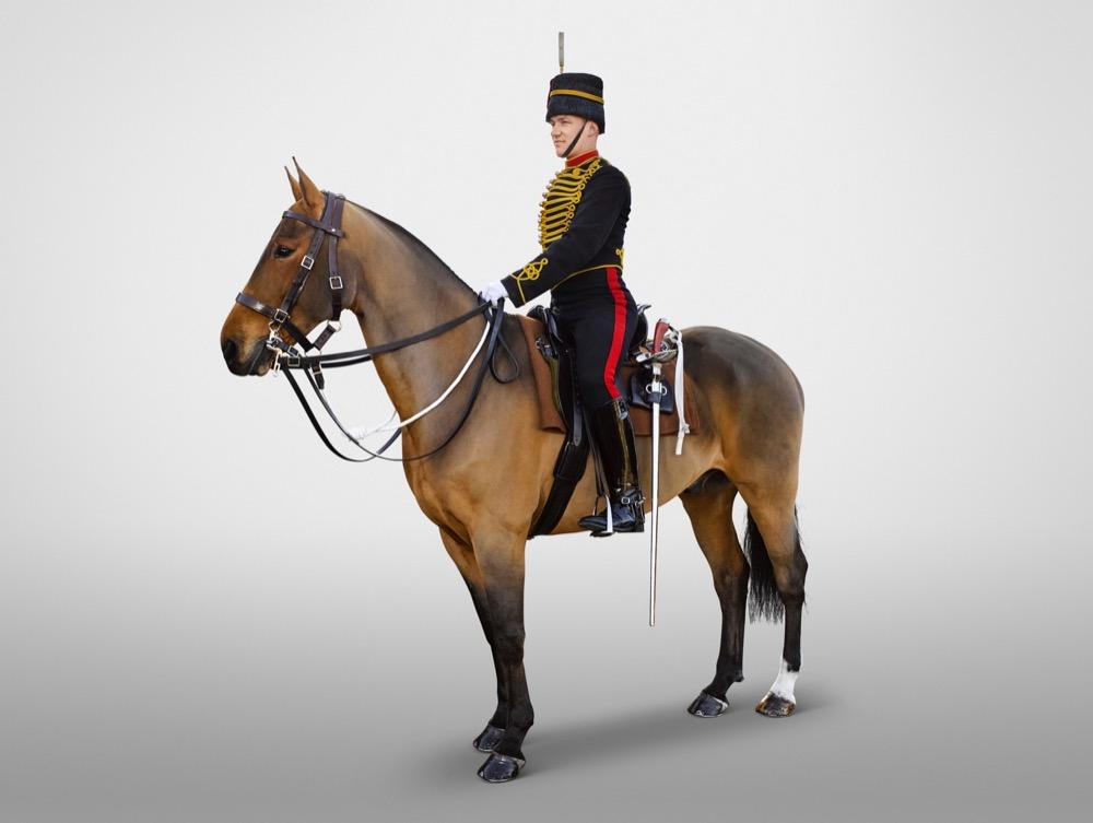 Trooper The King's Troop, Royal Horse Artillery .jpeg