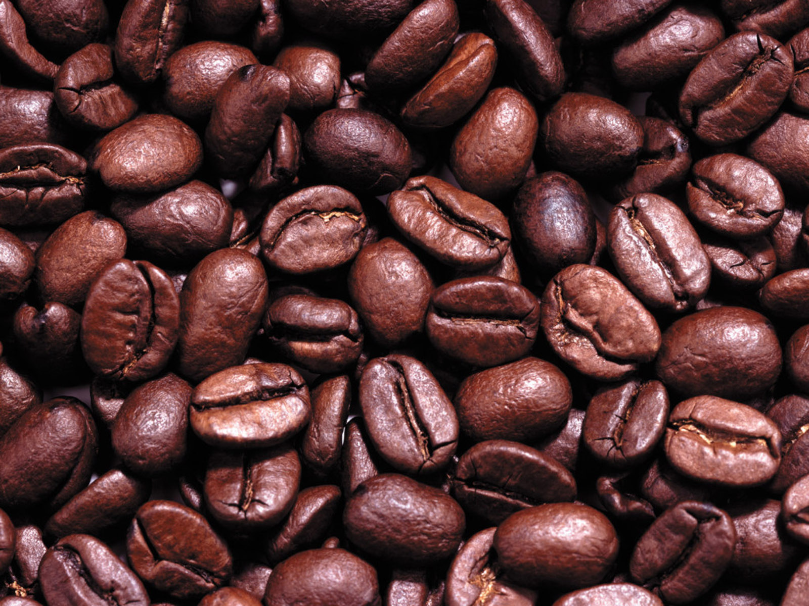 Coffee Beans Images 3.jpg