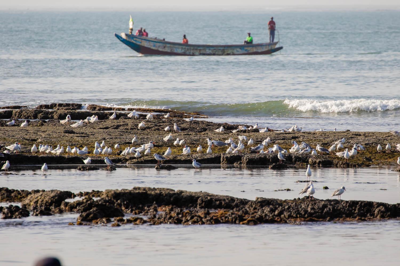 Tanji fishing port