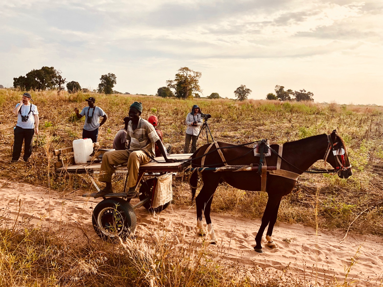 Border of Gambia and Senegal haha