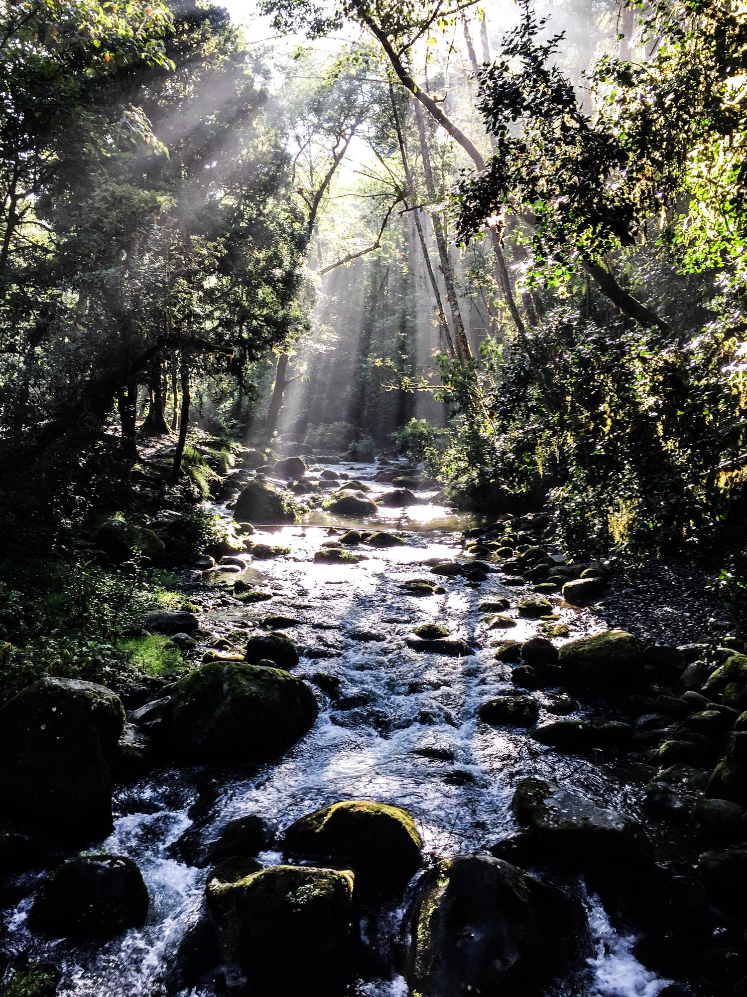 rio_savegre_dota_costa_rica.jpg