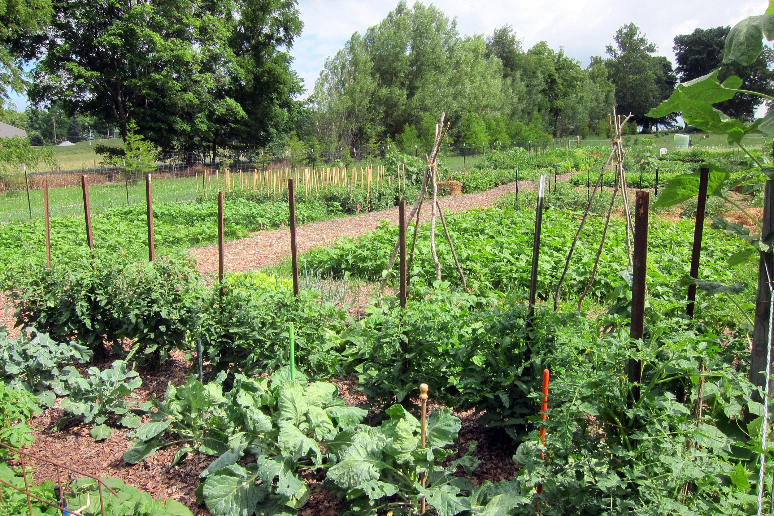 No land, no problem. - sign up for a community garden program…