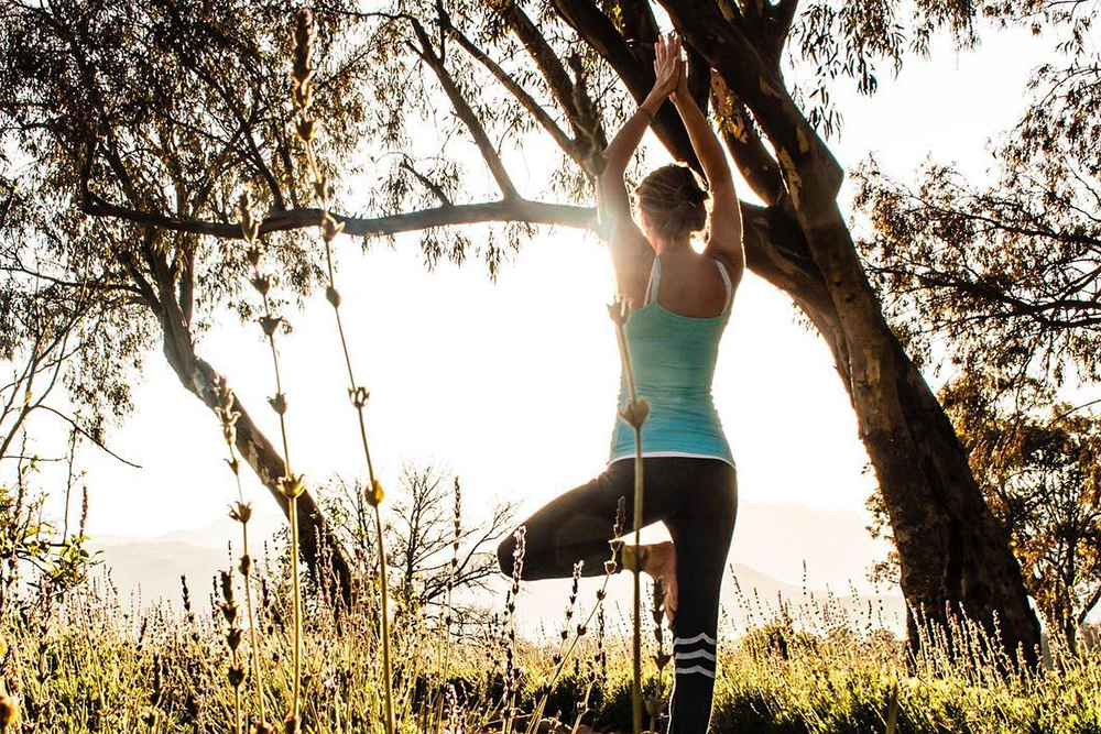 Root to Rise - Give your feet some love, find balance through breath, and move through simple yoga flow deeply connected to your roots, allowing you to rise and find deeper connections and space in your body. Nix Joubert will take you on a journey that makes you feel connected from your feet upwards.