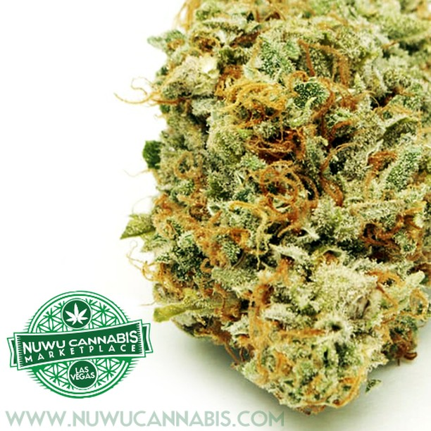 Good Morning #LasVegas! It's another Beautiful Day! www.nuwucannabis.com