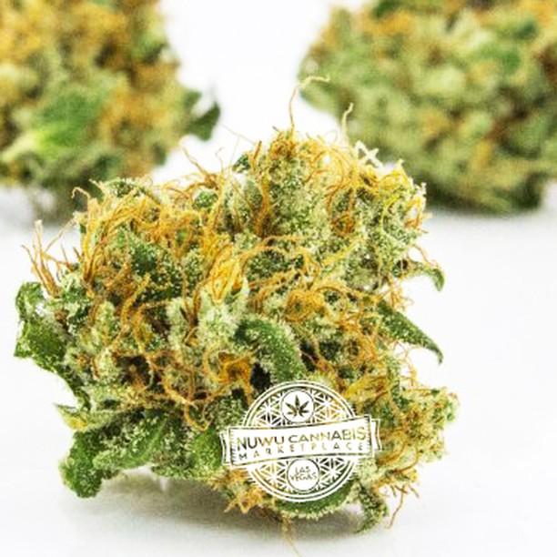 Sativa, Indica, or Hybrid? What's your choice #LasVegas? www.nuwucannabis.com