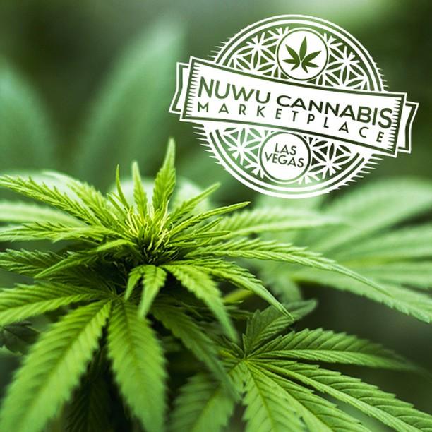 What's your favorite #terpene #LasVegas? www.nuwucannabis.com