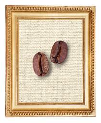Caffè: una ampia selezione di caffè monorigine -