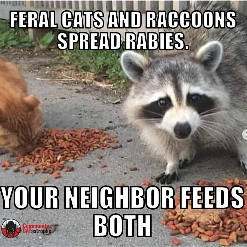 When your local #cathoarders feed #straycats and #feralcats, they're putting the whole neighborhood at risk. #Cats can and do spread rabies (even #trapneuterreturn cats, since they almost never get #rabies boosters). So do lots of other animals that eat the food dumped at a #catcolony. #goodneighborsdontfeedcats #catsbelonginside #catsbelongindoors #tnrfail