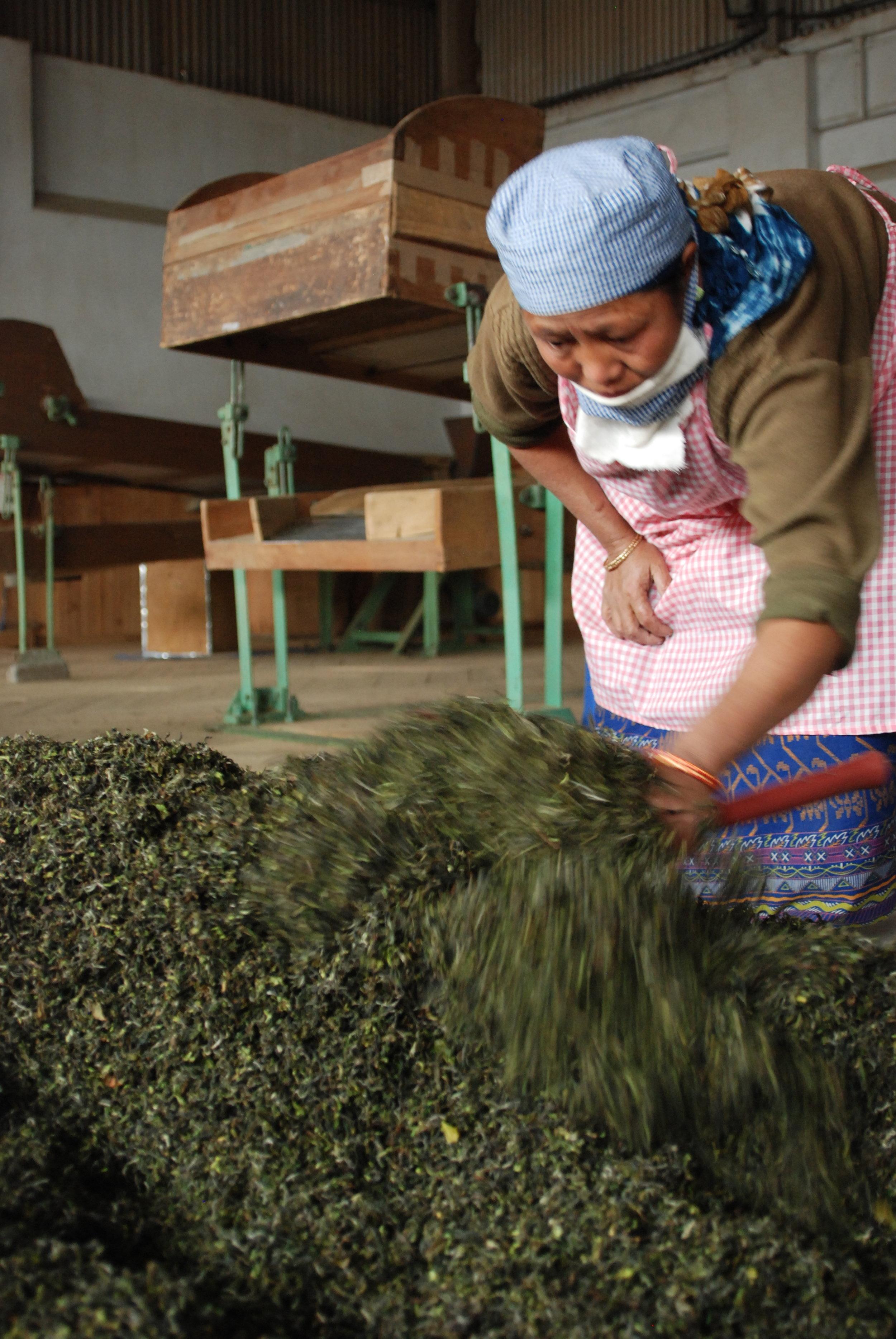 20090318_Darjeeling 287.JPG