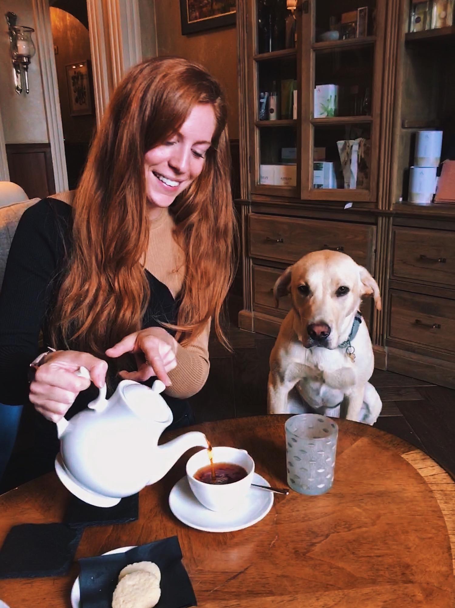 redhead-round-the-world-scotland-blogger-travel-dog-tea-afternoon.JPG