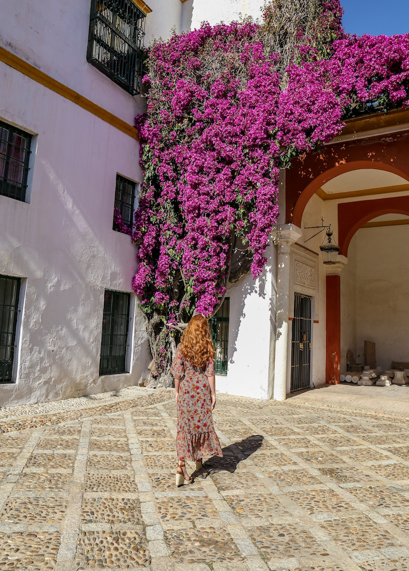 We spent hours exploring the gardens - Casa de Pilatos is stunning - I fell in love the moment I walked through the doors