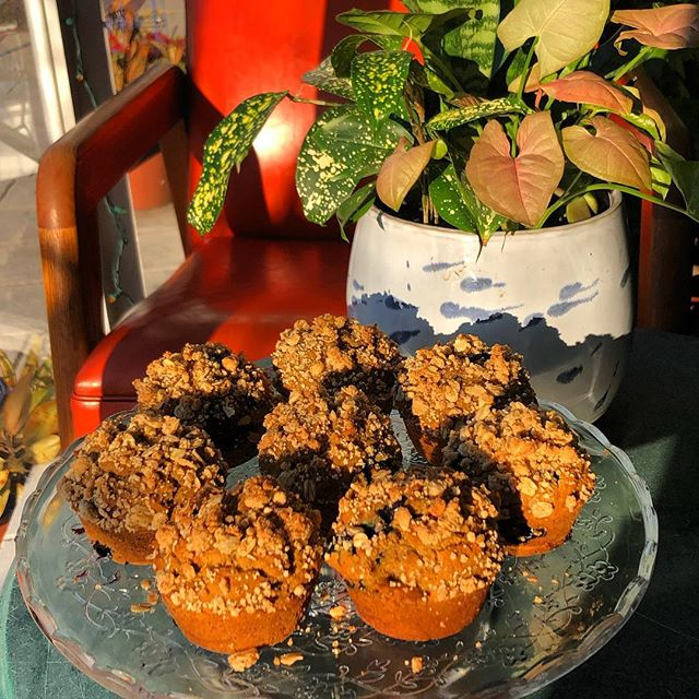 Come sit with us❤️🌱🌈💫🧚🏻‍♀️🐞 We're gearing up for spring and using up our saved blueberries from last season @blackrockorchard ..... super inspired to make blueberry streusel coffee cake muffins❤️ #veganlove #veganbaltimore #foodmagic #madewithlove #secretlyglutenfree #northeastbaltimore #baltimorevegan