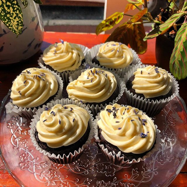 Chocolate cupcakes with lavender icing #vegan #vegantreats #veganbaltimore #northeastbaltimore #madewithlove