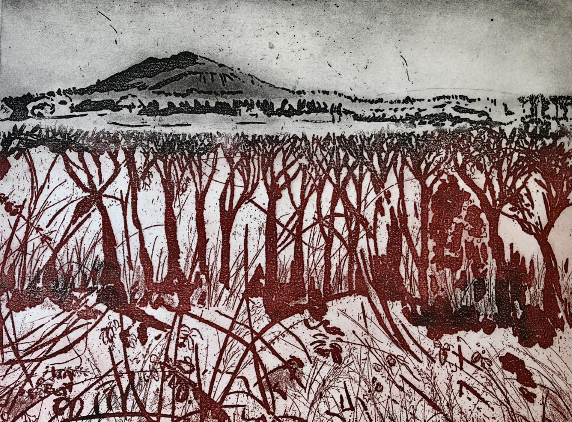 landscape etching -