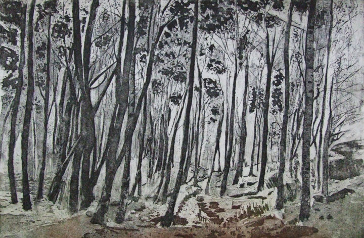 Linda Nevill Through the trees - Etching & aquatint.jpg