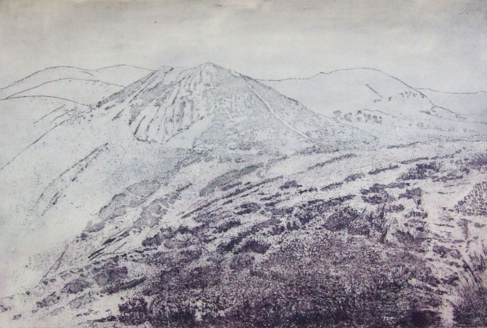 Borderlands-  landscape -etching & aquatint 54x68cm Linda Nevill.jpg