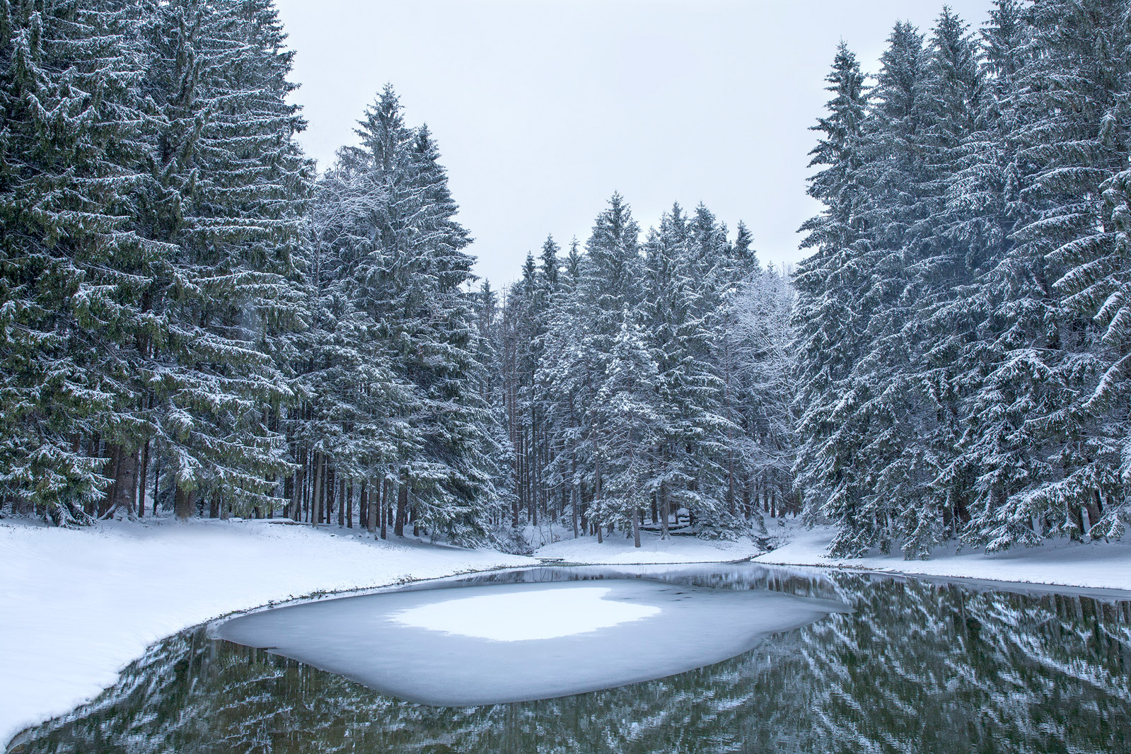 """Winter Pond"" - The Berkshires"