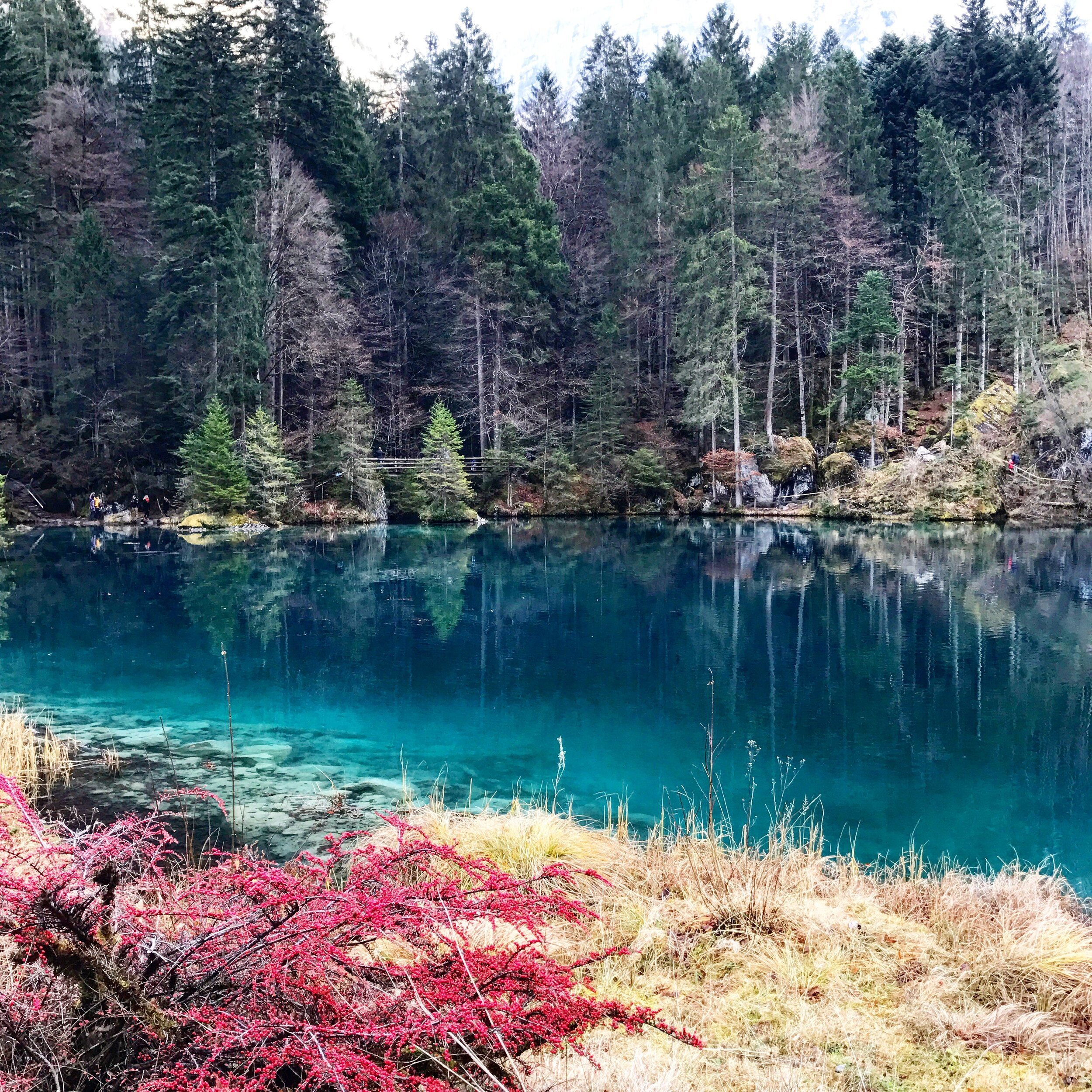 blausee - This mysterious blue lake transforms into a myriad of colours during the Autumn season - a beauty that is totally one of Switzerland's best kept secrets.