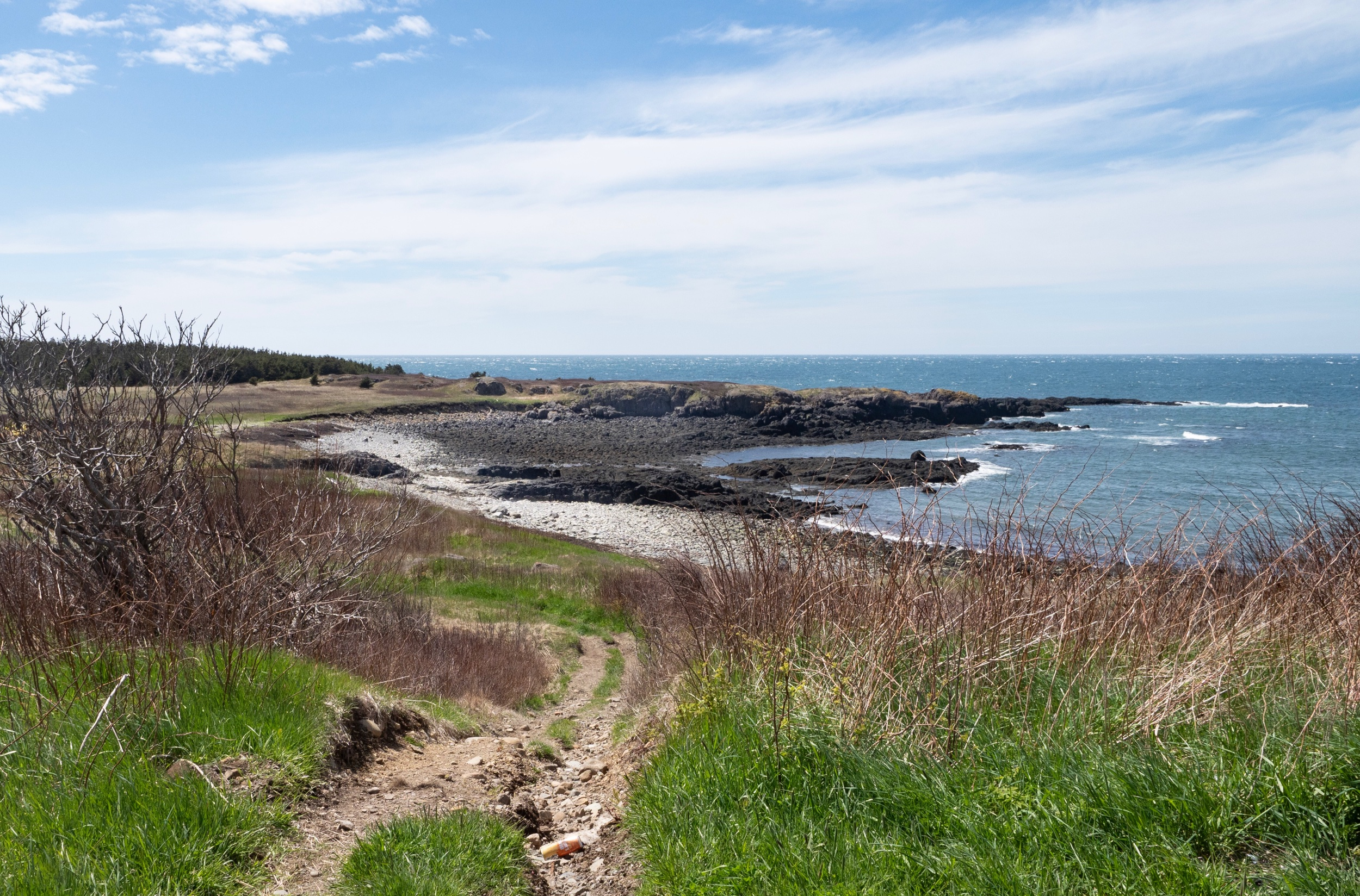 The tip of Brier Island