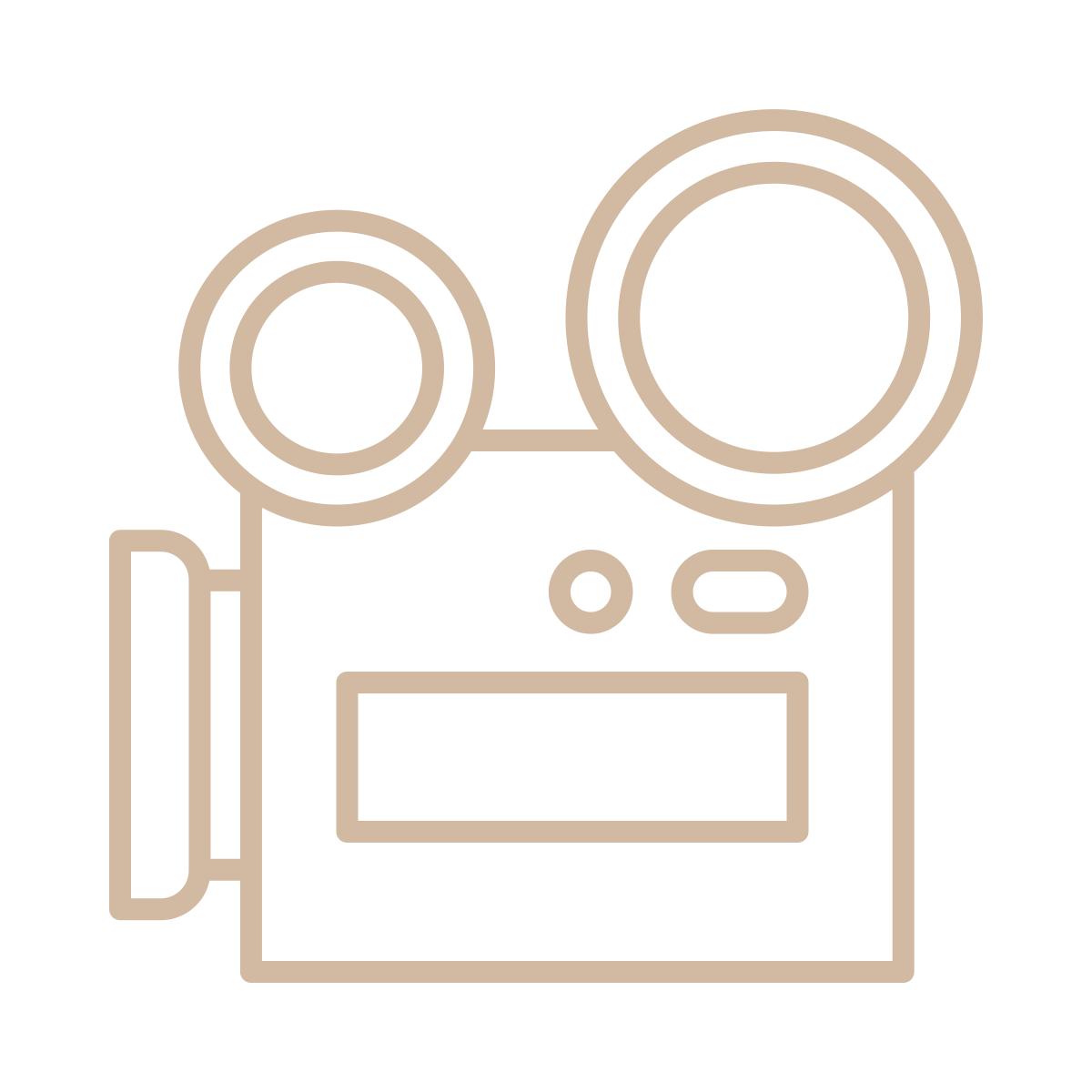 noun_videography_1704300_d2b9a2.png