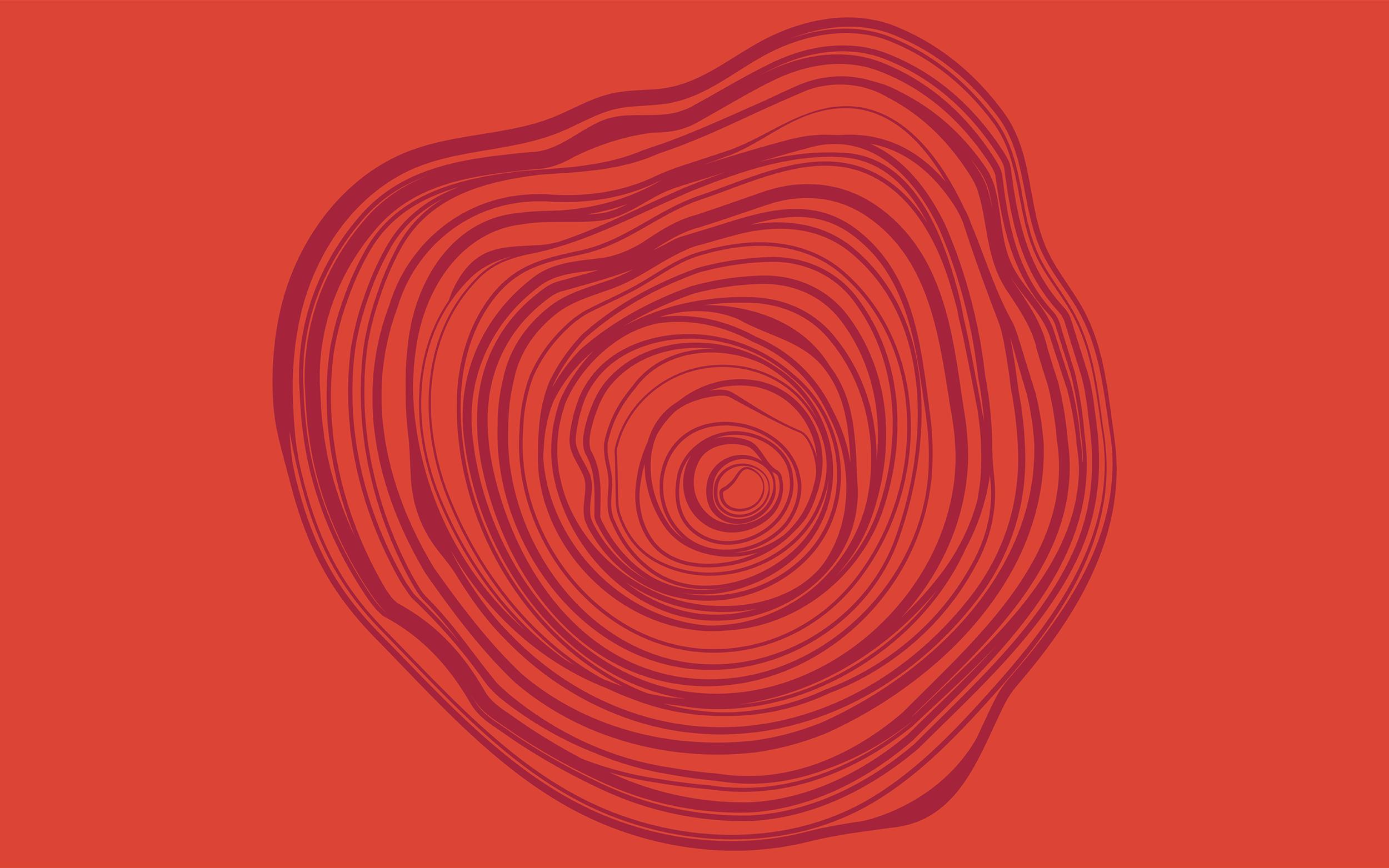 WildManor_Pattern_Final-04_LOW.png