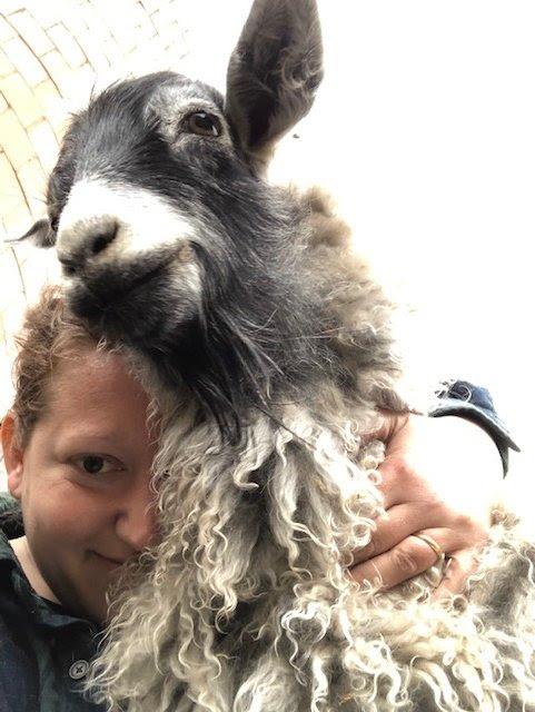 Bethany's-Goat.jpg