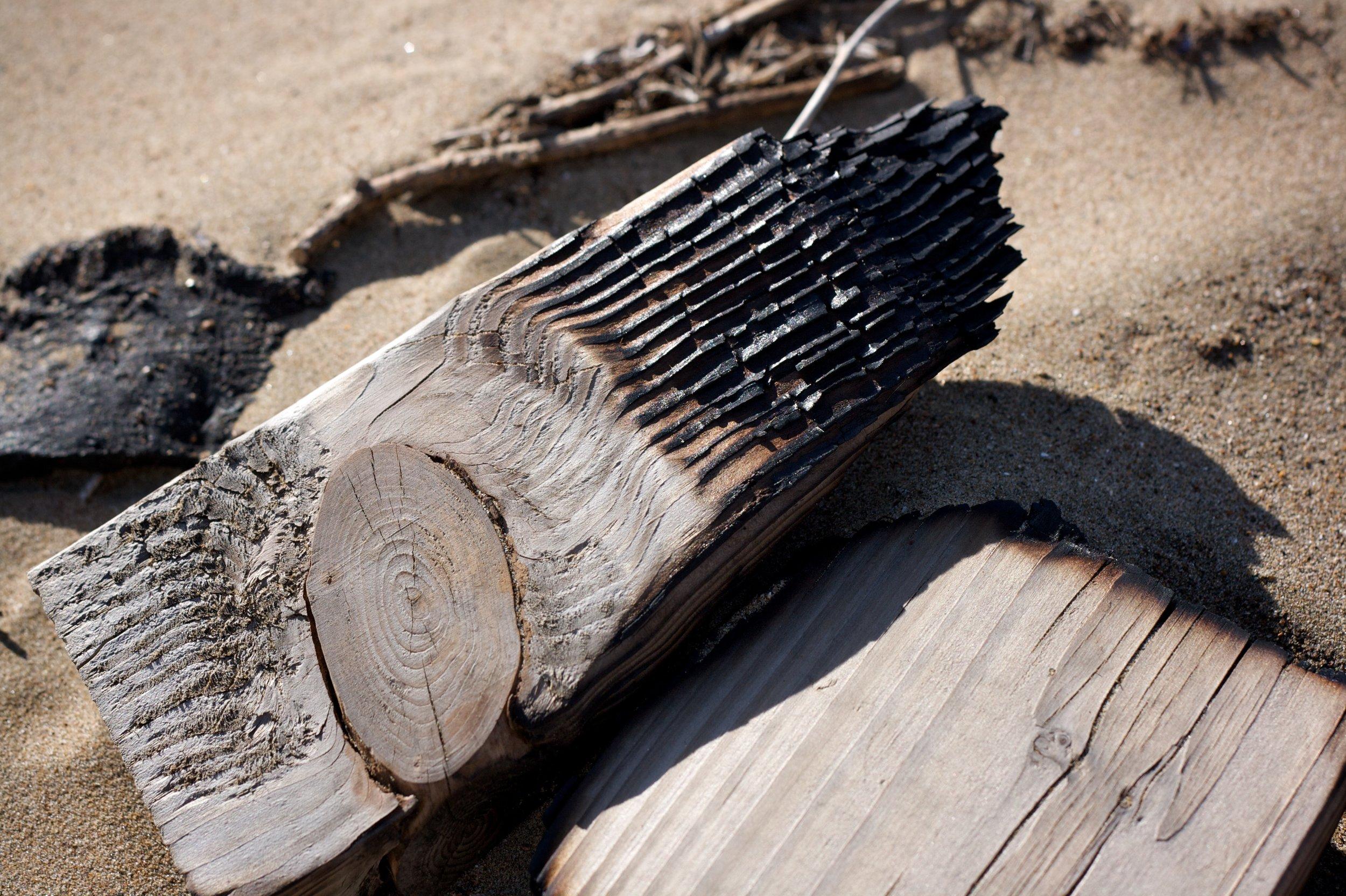 Bonfire Reject.jpg
