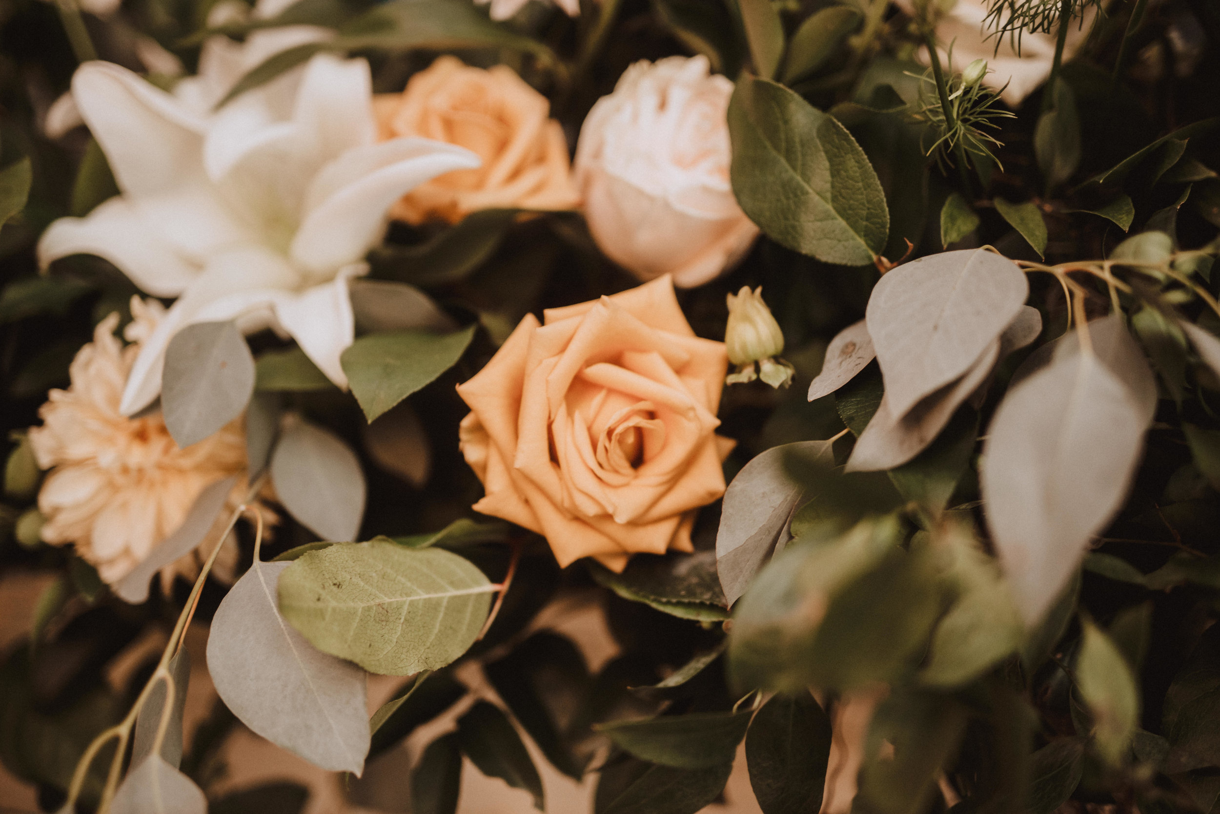 Well hello there… - We'll be expecting your call and can't wait to chat with you! Please contact us with any details and we'll get back in touch with you as soon as possible. brandon@eventsbymode.com(240) 644.3279