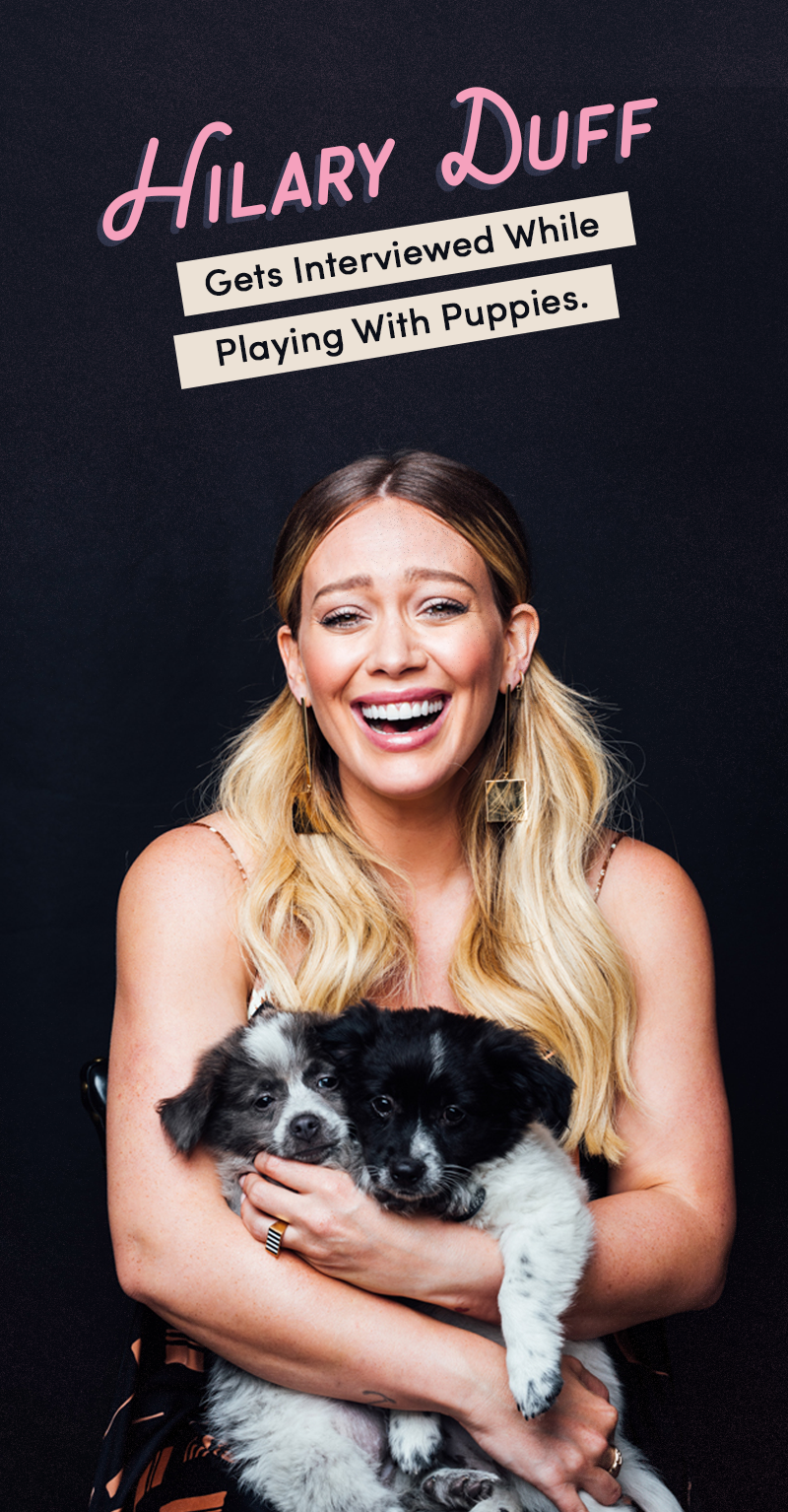hilary duff puppies final.png