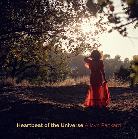 album-cover-Heartbeat-of-the-Universe.png