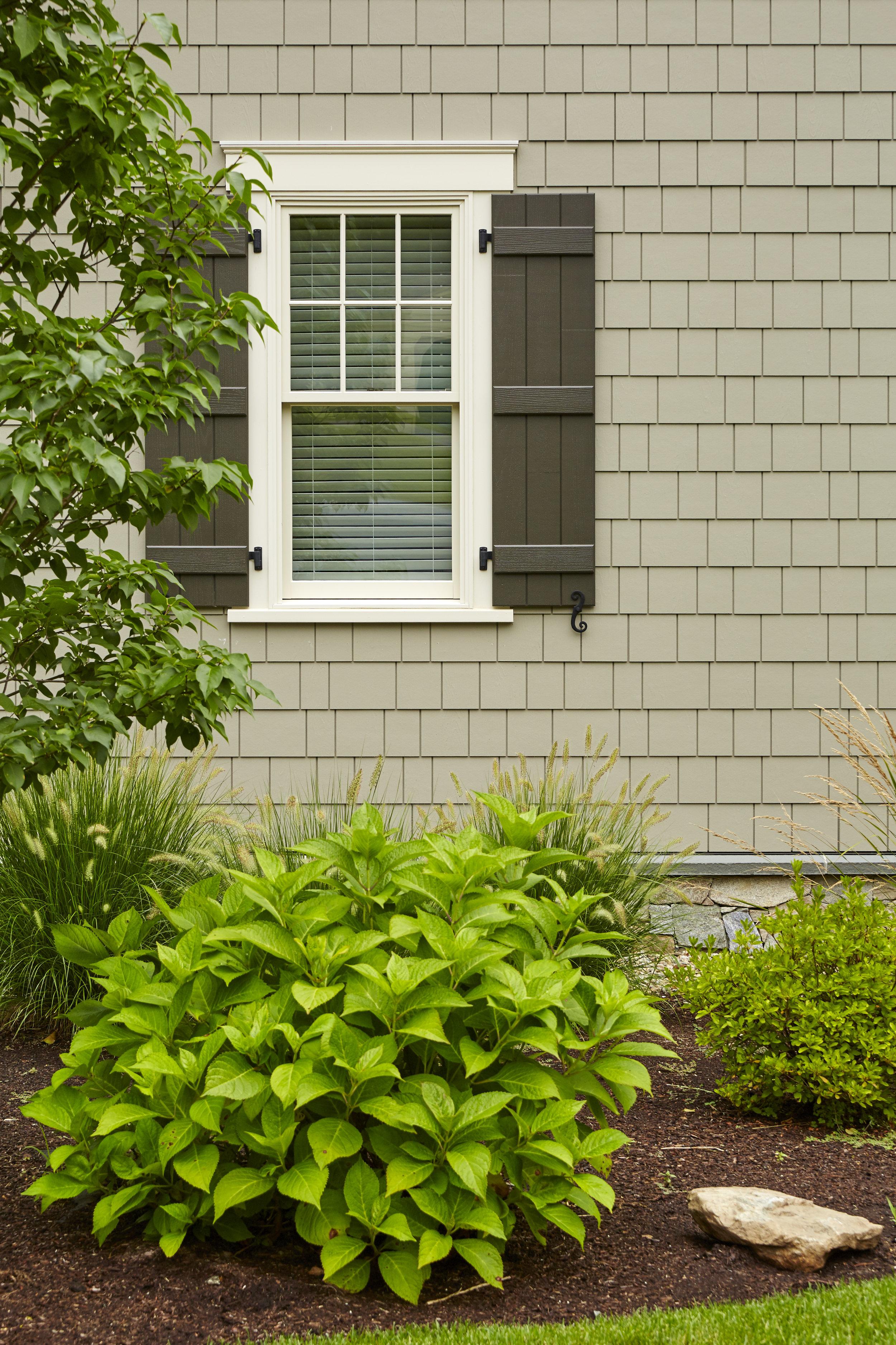 Siding & Windows -