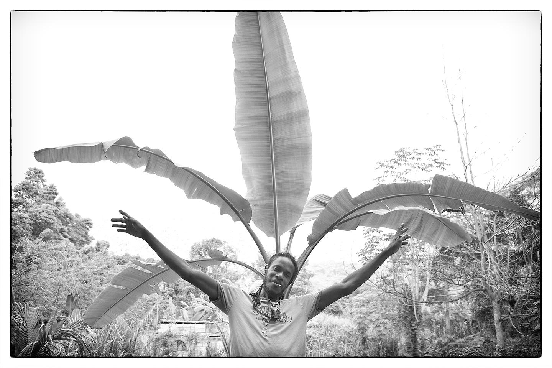 diephuis-rasta-jamaica-arms.jpg