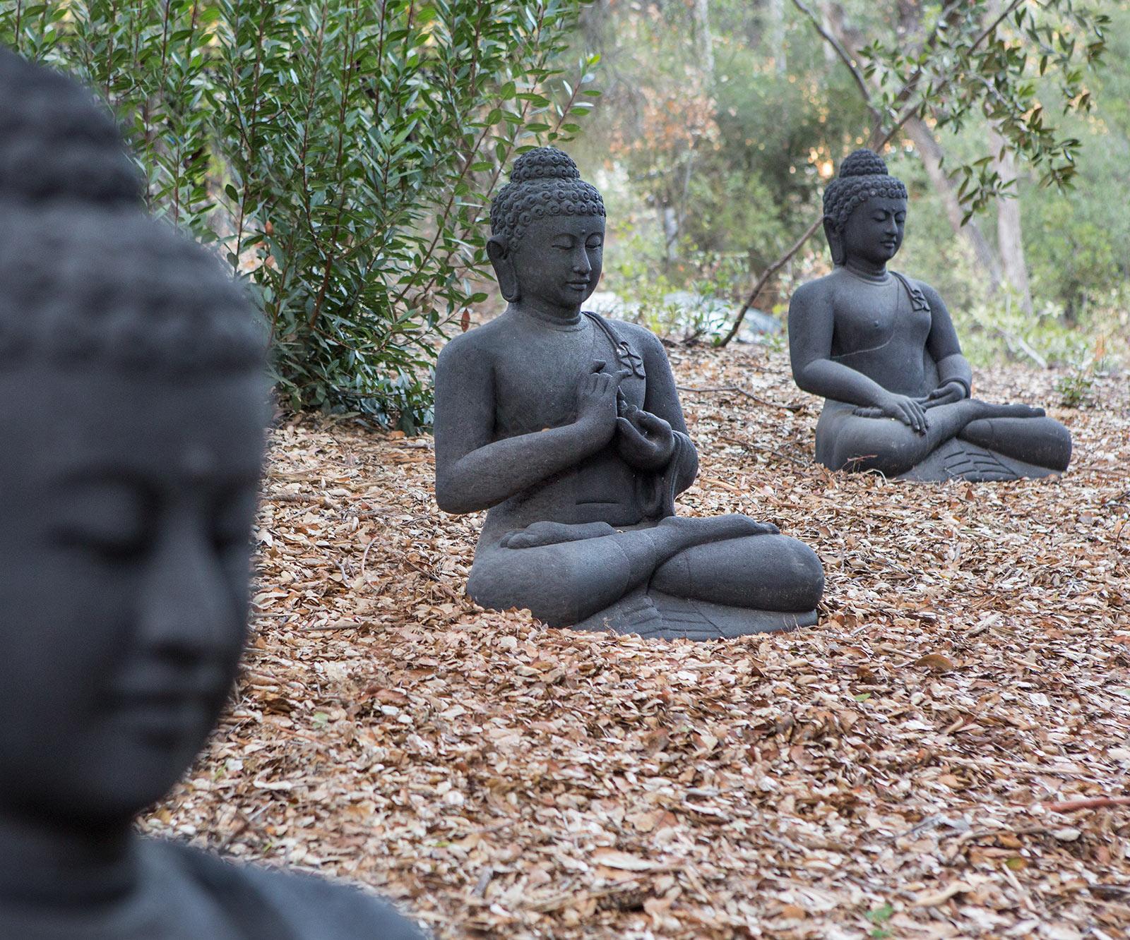 diephuis-3-buddha.jpg