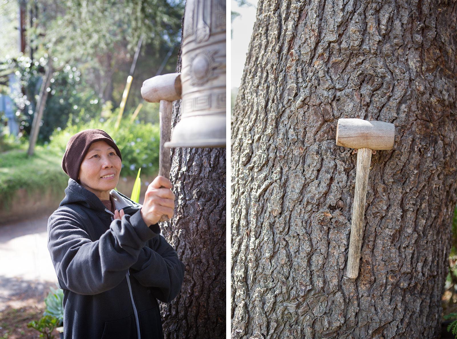 diephuis-deer-park-hammer.jpg