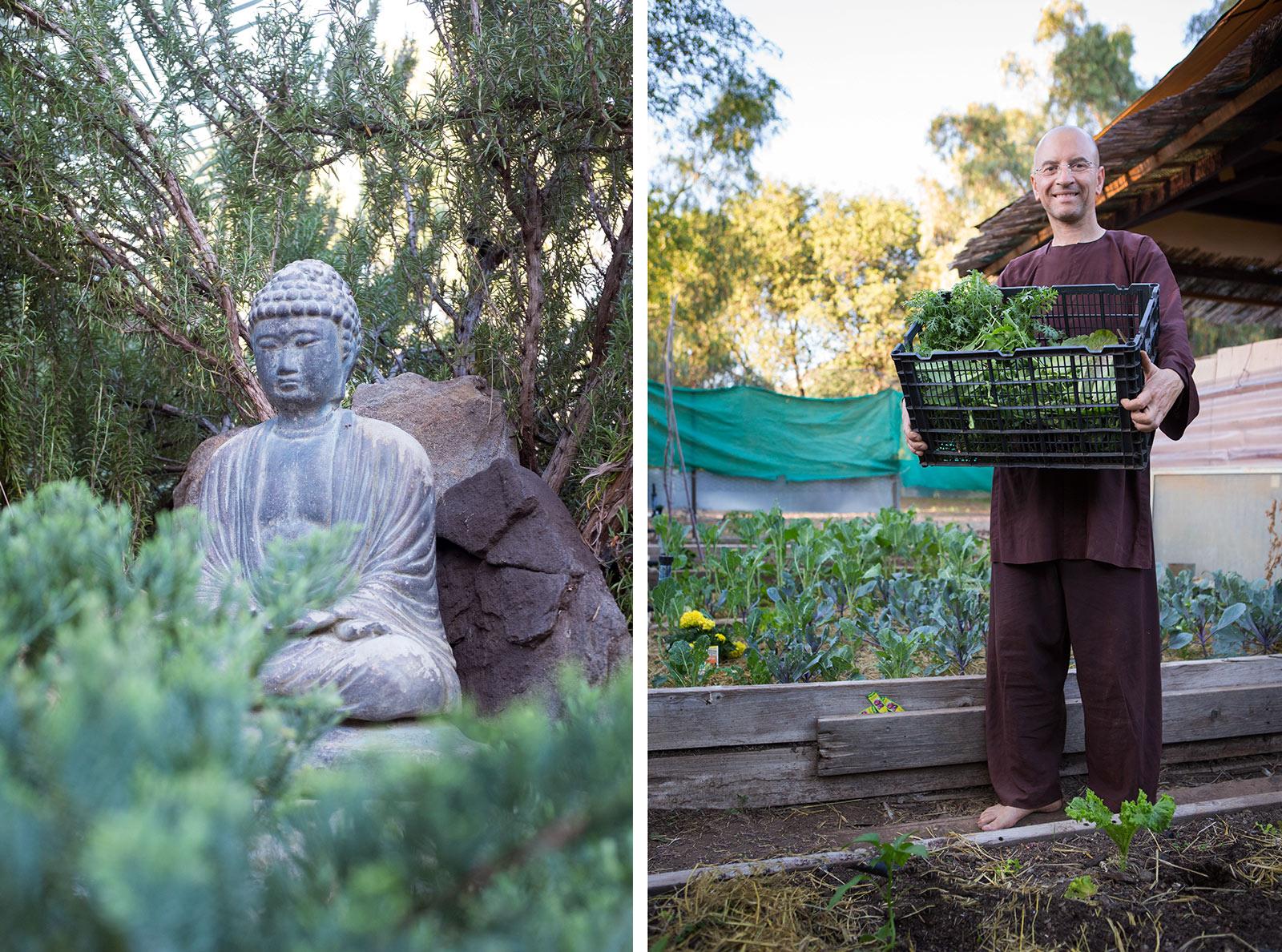 diephuis-garden-buddhist.jpg