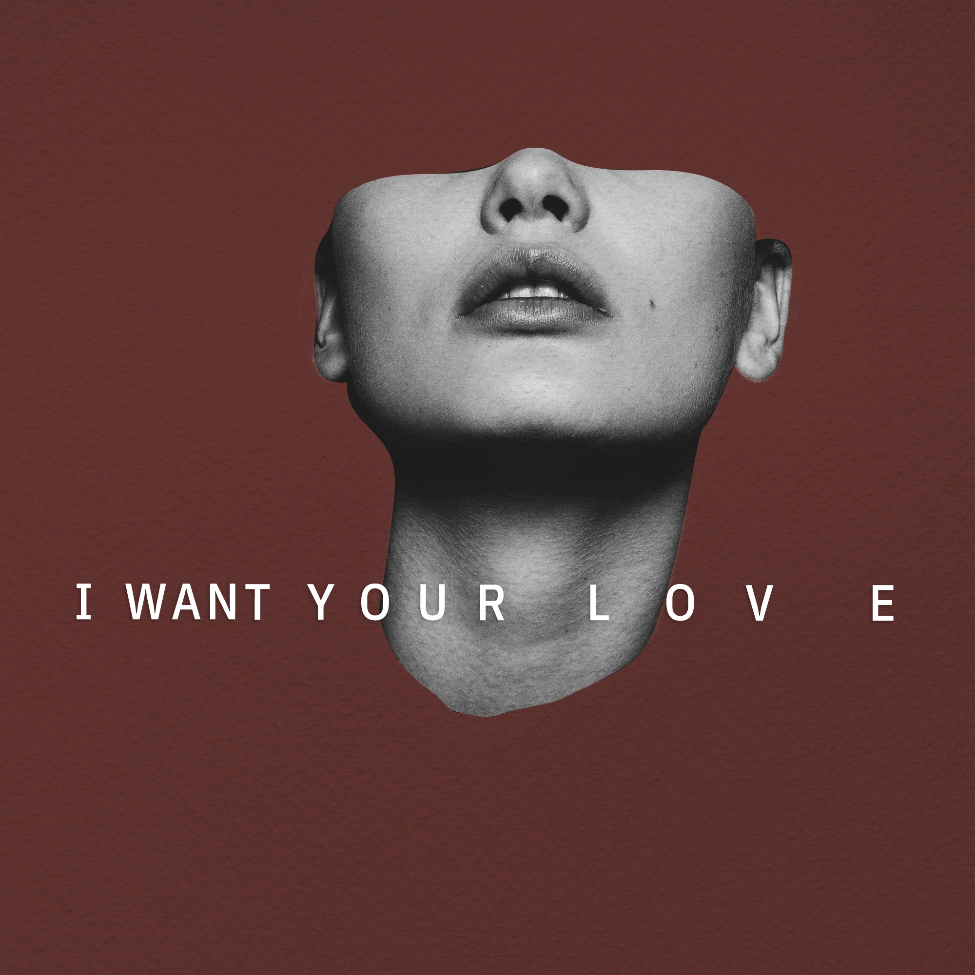 I Want Your Love - Craig Haller