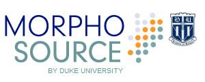 morphosource.jpg