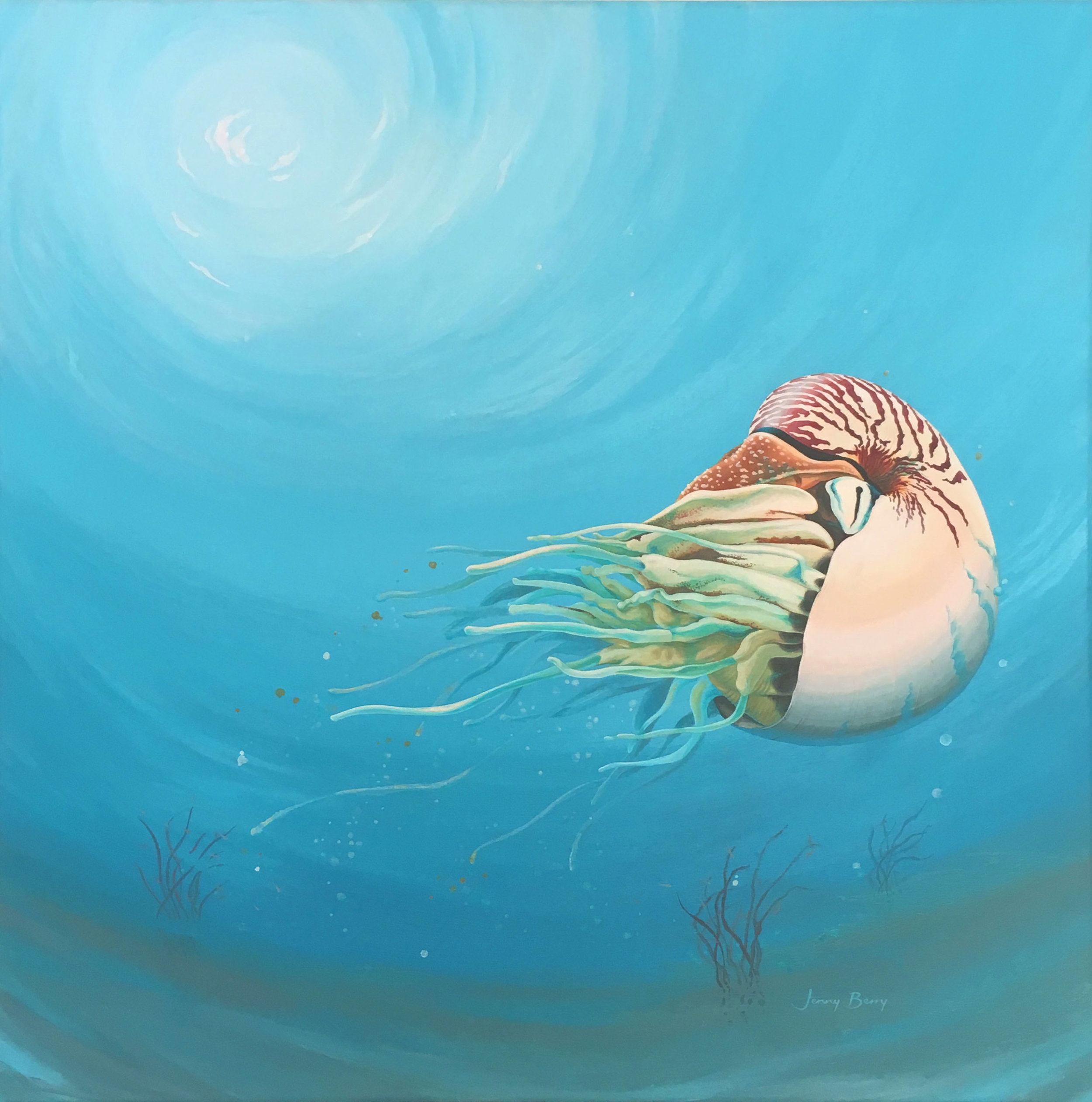 Nautilus Rising.jpg